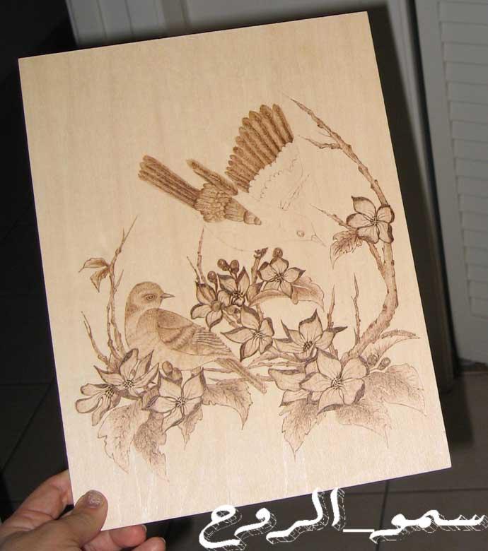 رسمتين بالحرق على الخشب بالخطوات Img_6718