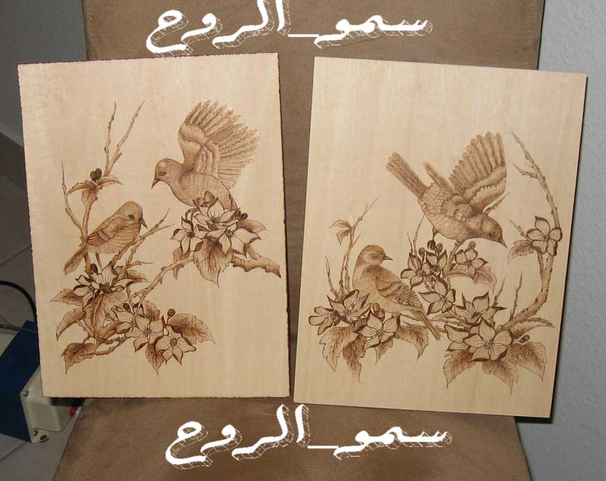 رسمتين بالحرق على الخشب بالخطوات Img_6719